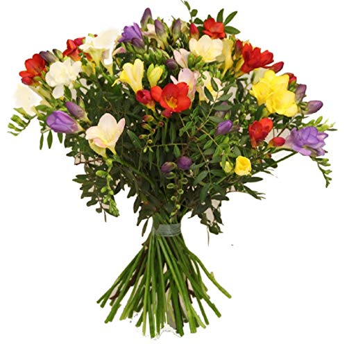 Flora Trans -Blumenstrauß mit frischen...