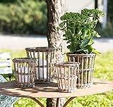 Unbekannt LUIS Korbvase, windlicht 20x21 cm Natur Teelichthalter mit herausnehmbarem Glas | Tischdeko | Gartendeko