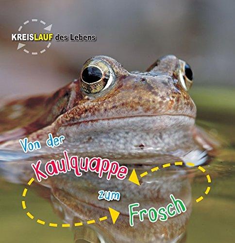 Von der Kaulquappe zum Frosch: Kreislauf des Lebens (CORONA Sachbücher)