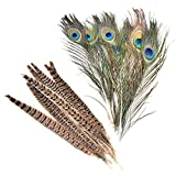 Skyzone 10 Piezas de Plumas de faisán Naturales, Colas de faisán y 10 Plumas de Pavo Real Naturales Reales para Sombreros de Pelo, Manualidades para Manualidades, decoración de Bodas en el hogar