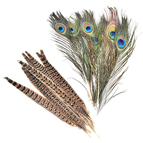 Barara King Natural Pheasant Feathers Pheasant Tails 14-16 inches hat DIY Accessories per Pack of 10