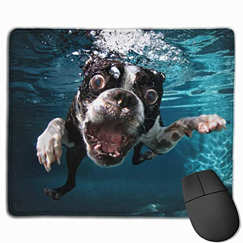 Mouse Pad with Stitched Edge, Boston Terrier Underwater Dog Mouse Mat, Non-Slip Rubber Base Mousepad for Laptop, Computer & PC, 10 x 12 inches