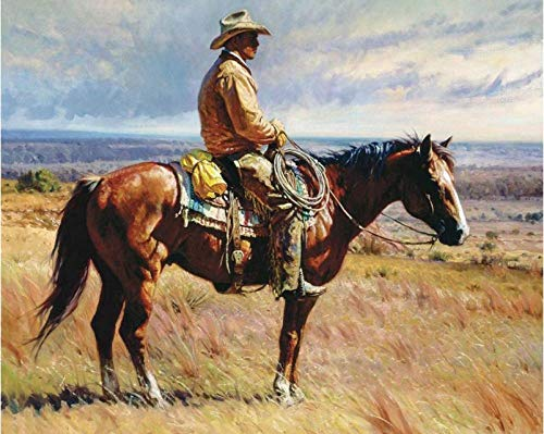 """DIY Paint by Numbers Kit for Adults - Cowboy Riding  Paint by Number Kit On Canvas for Beginners   Home Wall Decor   Pre-Printed Art-Quality Canvas 20"""" x 16"""", 3 Brushes, 24 Acrylic Paints"""