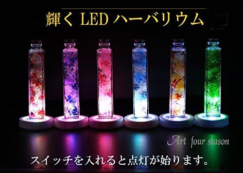 Artforseason(アートフォーシーズン)『LEDハーバリウムプリザーブドフラワー』