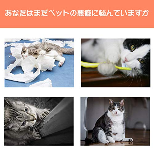 Bojafa猫おもちゃ子猫用またたびトイけりぐるみ3個セット