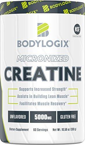 Bodylogix Micronized Creatine Monohydrate Powder, NSF Certified, Unflavored, 300g