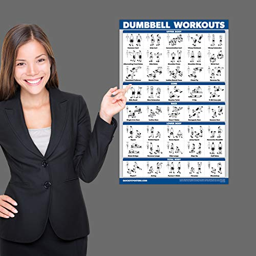 Palace Learning Dumbbell Workout Exercise Poster - Free Weight Body Building Guide | Home Gym Chart | Laminated, 18