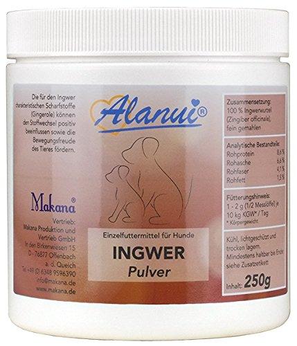 alanui Ingwer (gemahlen) aus Nigeria, 1er Pack (1 x 250 g)