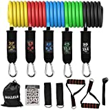 Hollela Resistance Bands Set 12 Pcs, Home Workout - 5 Strong Tube, 2 foam handle, 2 ankle straps, 1 door anchor, Carry Bag- Exercise Equipment for Strength, Yoga, Pilates Physio, Gym for men women