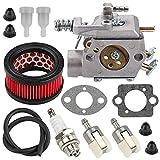 HONEYRAIN CS-440 Carburetor with Air Filter for Echo CS-440 CS-4400 303T Chainsaws Replace Walbro WT-416 WT-416-1 WT-416C Echo 12300039330 12300039332 12300039333