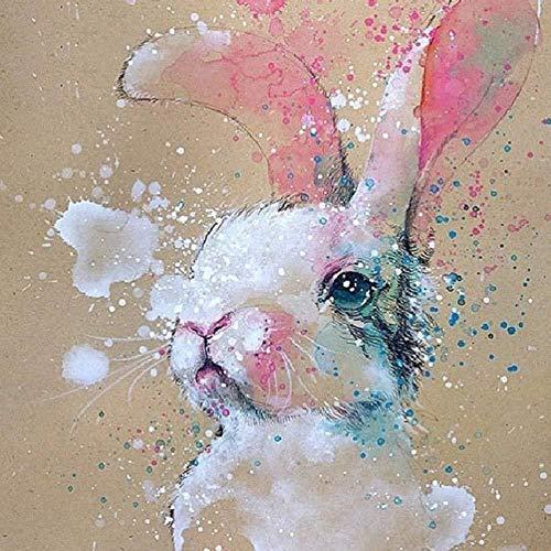 HCFFCH Paint by Number Kit Rabbit DIY Pintura al óleo Dibujo Lienzo con Pinceles Decoración navideña Decoraciones Regalos -16x20 Pulgadassin Marco