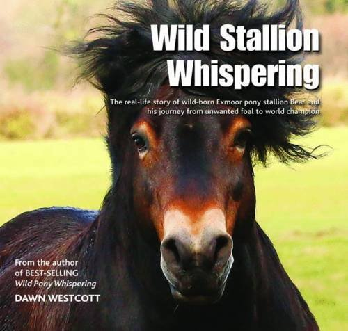 Wild Stallion Whispering: The Real-Life Story of Wild-Born Exmoor Pony Stallion Bear and His Journey from Unwanted Foal to World Champion by Dawn Westcott (2016-08-04)