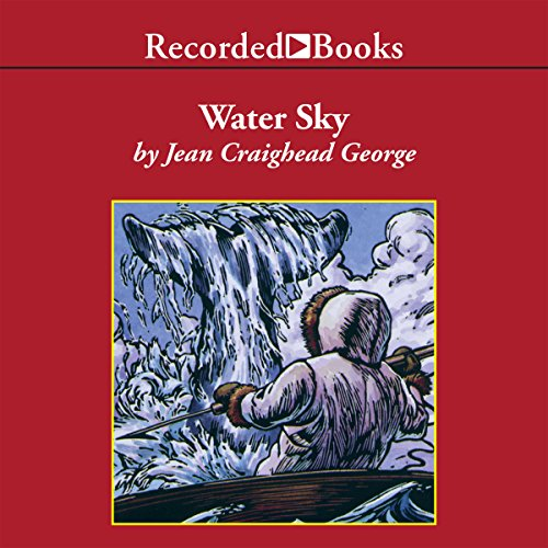 Water Sky audiobook cover art