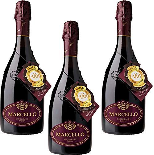 3 Bottiglie di Ariola Marcello Lambrusco Langhirano Dry Vino Spumante Rosso