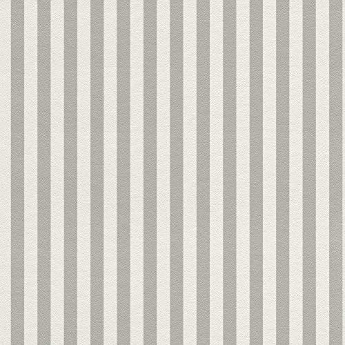 Rasch Textil 288956 Vliestapete, 10,05 m x 0,53 m