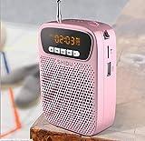 kkkxingyue amplificador de voz portatil micrófono(15 W) con recargable batería de litio de 2500 mAh profesional bluetooth voice amplifier Altavoz para profesor guias turístico promotores ect