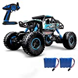 DoitY Electric RC Car, 1:16 4WD 2.4Ghz High Speed Off Road Remote Control Car/ Vehicle/ Truck/ Crawler Climber, Two Rechargeable Batteries Included, Adults and Kids