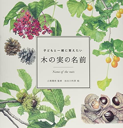 子どもと一緒に覚えたい 木の実の名前 (momo book)