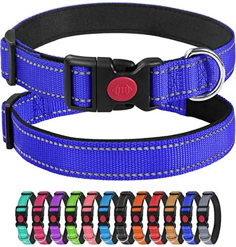 Joytale Reflective Dog Collar with Safety Buckle 12 Colors Soft Comfortable Neoprene Padding product image