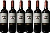 Casillero del Diablo Carmenere Non-Vintage Wine