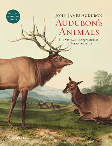 Audubon's Animals: The Viviparous Quadrupeds of North America