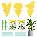 DAOUZL 60 Pièges à Insecte, Pieges Collants Double Face, 4 Support et 40 Longe, pour Blanc Feuille de Mouches Les pucerons Lutte Contre Les Insectes