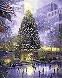 XIAOTAIZINAI Central Park of New York Pintura al óleo Imagen de Paisaje de EE. UU. por números Dibujo Digital Colorear Decoración de habitación Decoración-Marco DIY de 40x50 cm