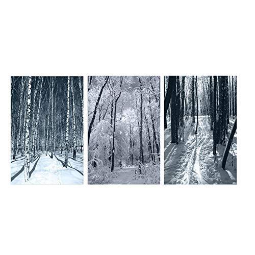 wekeke Carteles e Impresiones en Blanco y Negro del Paisaje del Bosque Natural Cuadro en Lienzo Estilo nórdico escandinavo Cuadro de Pared para Sala de estar-50X70Cmx3 Piezas Sin Marco