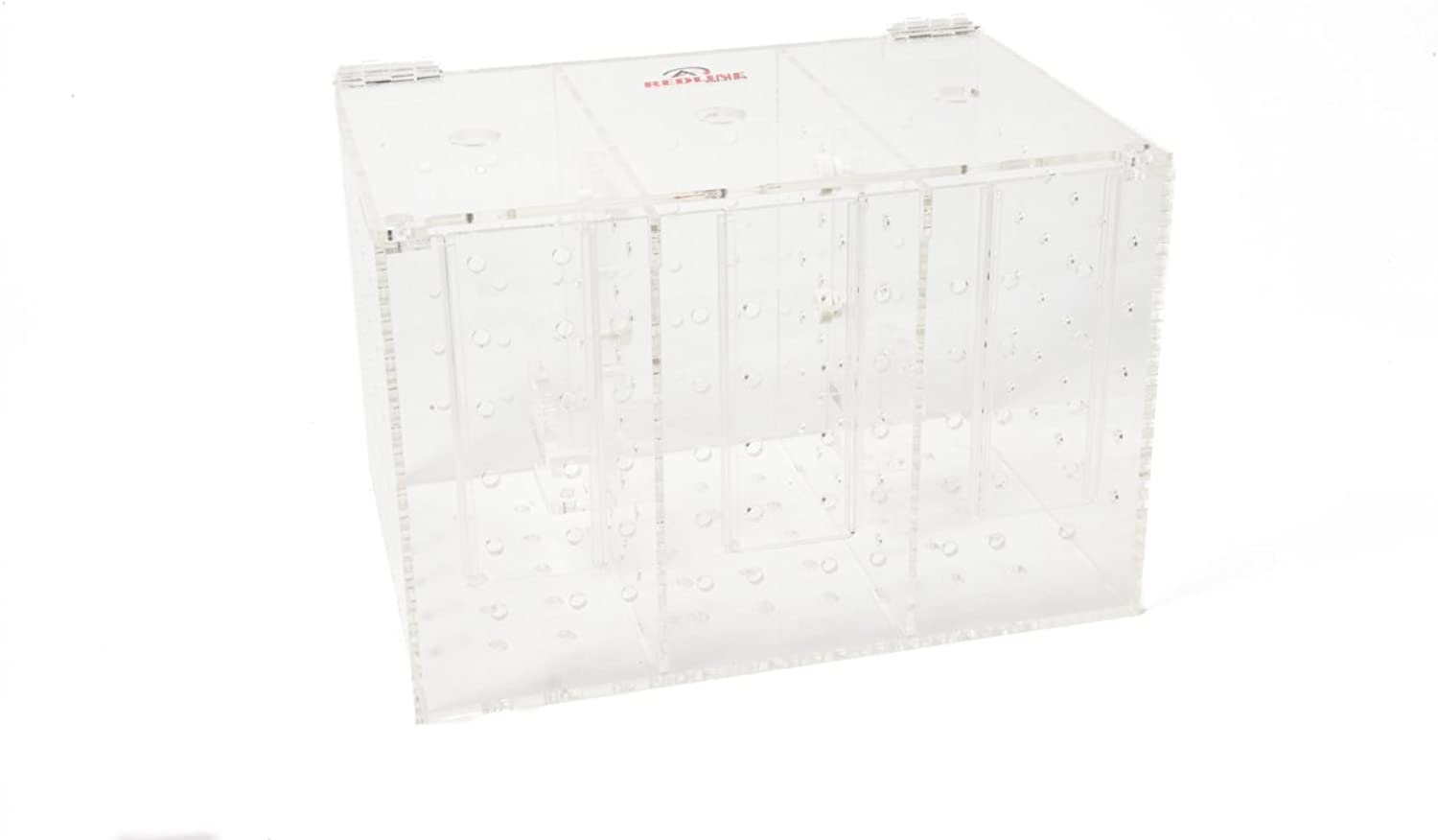 Redline Aquatics RED01169 Large Quarantine Box Triple Chamber