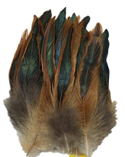 ERGEOB Hahn Feder - Ideen für die Kostüme, Hüte, Home dekor Circa 100 stück 12-18cm braun