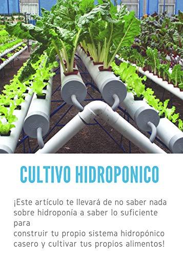Hidroponia: Cultivo Hidroponico sin suelo. (1) eBook: Parfait, Ruben : Amazon.es: Tienda Kindle
