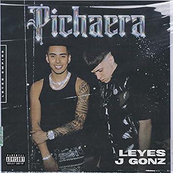 Pichaera