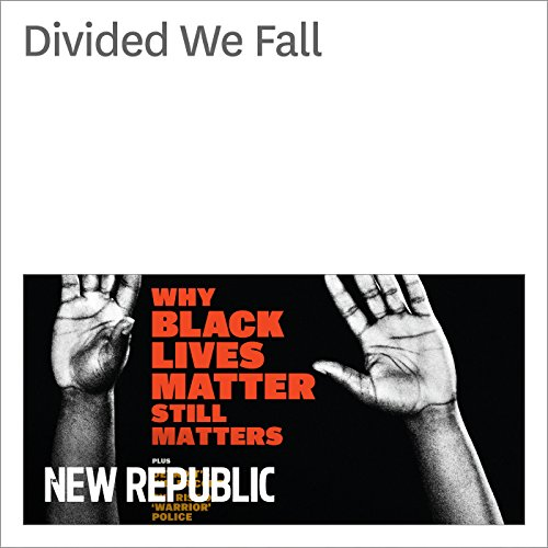 Divided We Fall audiobook cover art