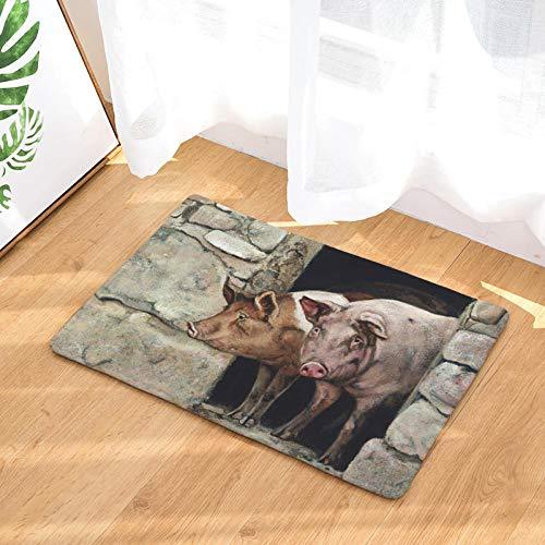 Kpdar Felpudo Cerdo AnimalEntrada De Casa Alfombra Lavable Antideslizante Alfombras De Baño Alfombra De La Puerta Tapetes 50X80Cm/19.70X31.50 Pulgadas