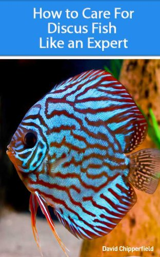 How to Care for Discus Fish Like an Expert (Aquarium and Turtle Mastery Book 3) (English Edition)