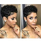 Naseily Short Afro Kinky Curly Synthetic Wigs for Black Women African American Short Hair Wigs 4 Colors Availble (Nas-9641-1B)