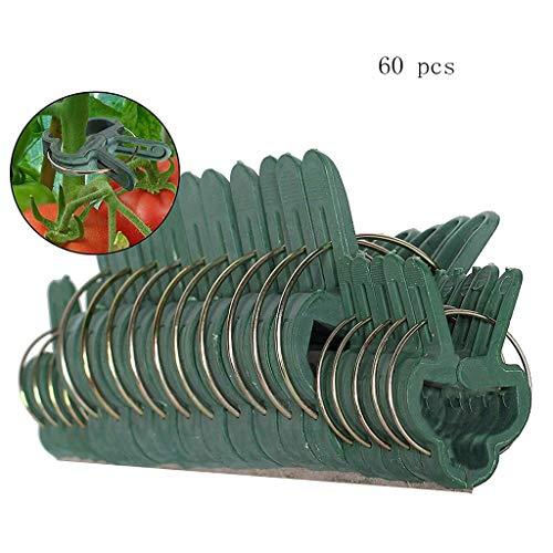 Luccase 60PCS Attache tomates Clips de Fixation de Jardin Réglable Support Caches de Tuteurs de Jardin Structure de Support Attache-Plante pour Jardin/Vigne/Légumes/tomates