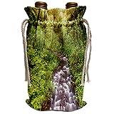 3dRose Bridal Veil Creek, Columbia River Gorge, Mt. Hood National. - Wine Bags (wbg_332036_1)
