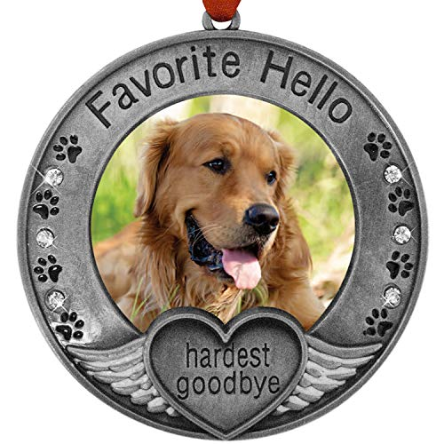 BANBERRY DESIGNS Pet Memorial Ornament - Picture Ornament for a Dog or Cat - Engraved with The Saying Favorite Hello, Hardest Goodbye - Pet Remembrance