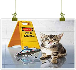 Mannwarehouse Animal Living Room Decorative Painting Cute Flirty Adorable Kitten on The Floor with UFO and Warning Sign Art Print Image Modern Minimalist Atmosphere 24