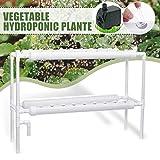 水耕栽培キット、36植物サイト水耕栽培システム、無土壌栽培PVCパイプ、2層