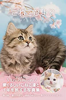 [こねこびより]のこねこびより Four Seasons