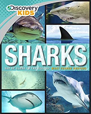 Sharks (Discovery Kids) (Family Reference Guide)