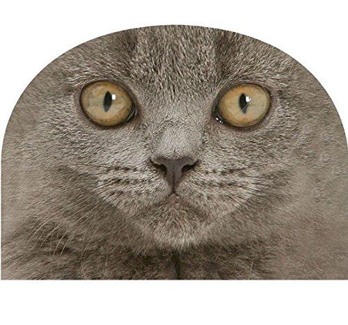 Mars & More JIFCTMBK Kaffeewärmer Britisch Kurzhaar Katze - Kaffeemütze Teewärmerhair grey