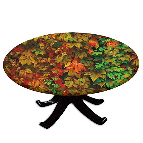Elastic Edged Polyester Fitted Table Cover,Vivid Leaves of Fall Colorful Fresh Nature Leafage Change of Seasons Theme Image Print,Fits up 45'-56' Diameter Tables,The Ultimate Protection for Your Table