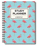 Nourish A5 Study Planner for 6 Months Undated Hardcover, A Must Have