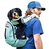 K9 Sport Sack | Dog Carrier Adjustable Backpack (Large, Air Plus - Summer Mint)
