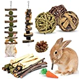KATUMO Rabbit Chew Toys, Hamster Toys Natural Apple Wood Guinea Pigs Chewing Toys Bunny Ball Toys Teeth Care Toys for Rabbits Guinea Pigs Squirrel Gerbils Small Rodent Pets Chewing and Playing