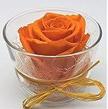 almaflor Rosa eterna preservada Naranja. Gratis TU ENVÍO Prime. Rosa preservada Naranja en...