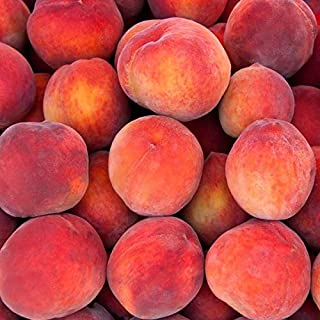 (5 Gallon) RedSkin Peach Tree Combines The Best Attributes of The Red Haven and Elberta Peach Trees to Produce one Premium Fruit.